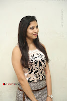 Actress Vanditha Stills in Short Dress at Kesava Movie Success Meet .COM 0084.JPG