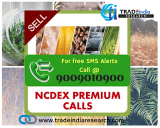 NCDEX Free Tips, MCX free tips