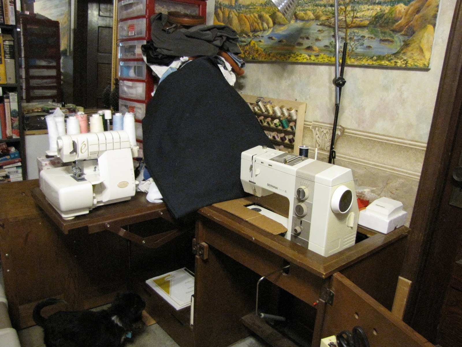 My Very Favorite Sewing Machine Curly Is The Bernina 930 Record Electronic Was An Expensive When It New