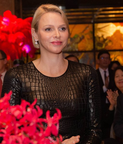 Princess Charlene wore Tom Ford long sleeve crocodile print sheath dress. Panoramic city scenery of Dubai bag