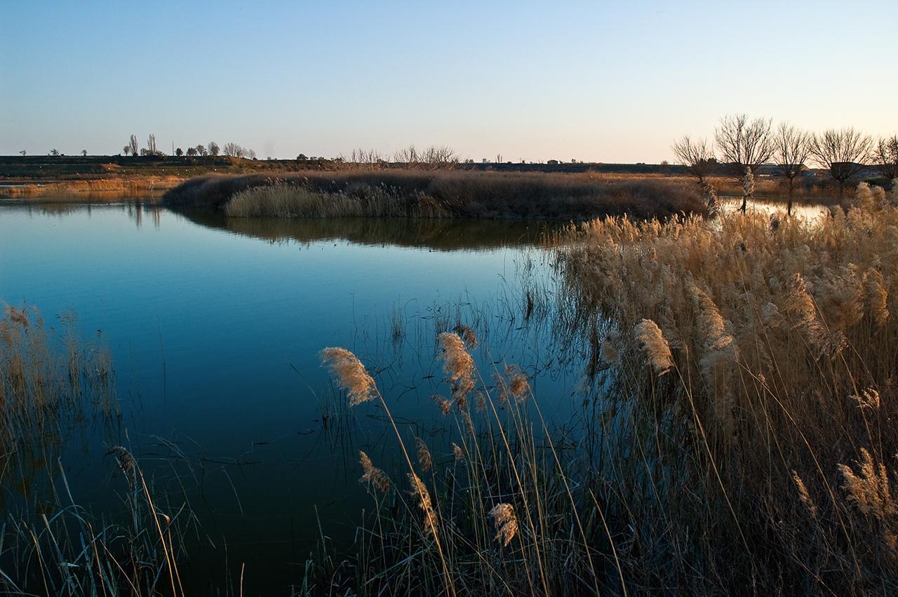 Ivars d'Urgell pond in Lleida, Catalonia
