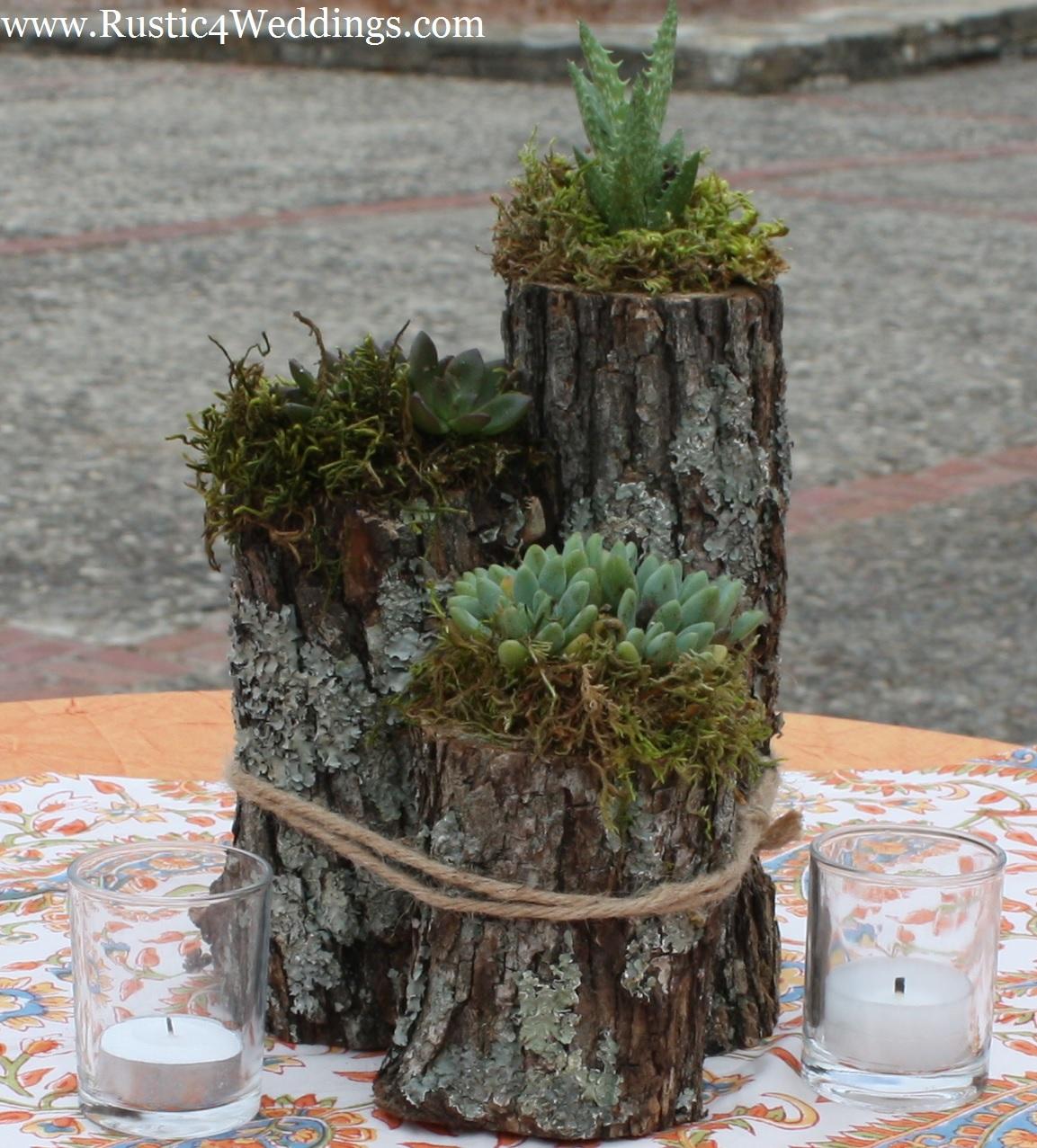 rustic 4 weddings rustic succulent plant holder. Black Bedroom Furniture Sets. Home Design Ideas