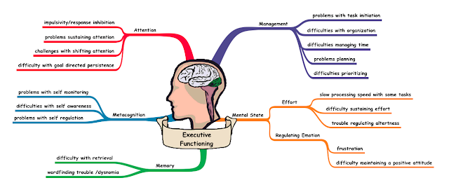 What are all the parts of executive functioning?