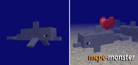 Download minecraft aquatic apk | Aquatic park map for