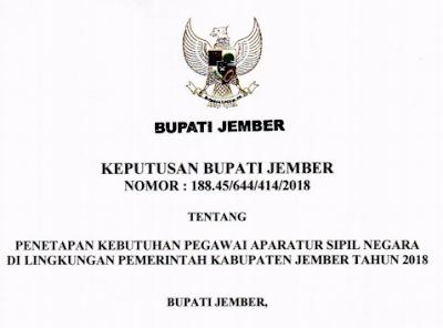 Kebutuhan ASN Baru di Kabupaten Jember