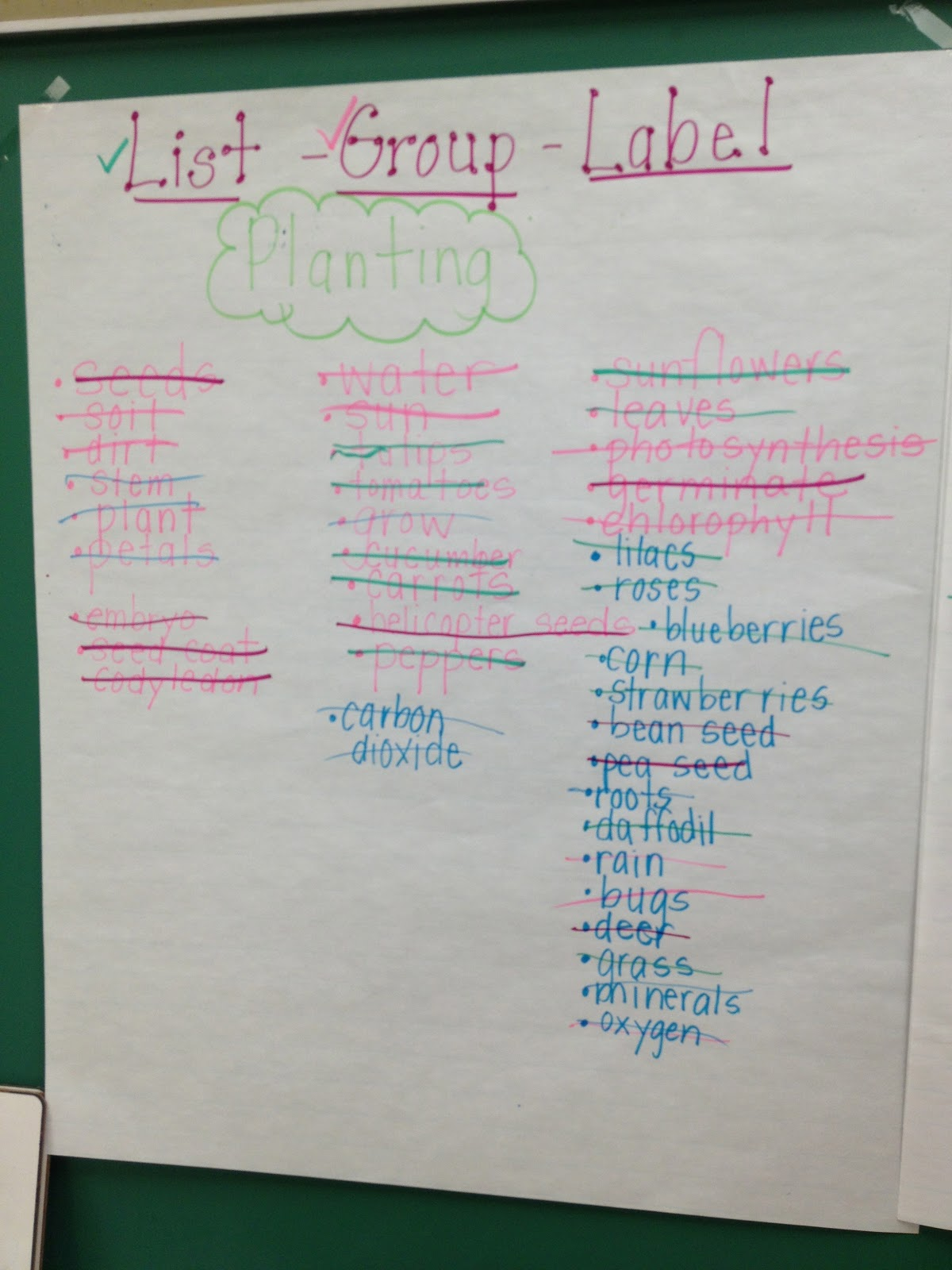 List Group Label Vocabulary Strategy