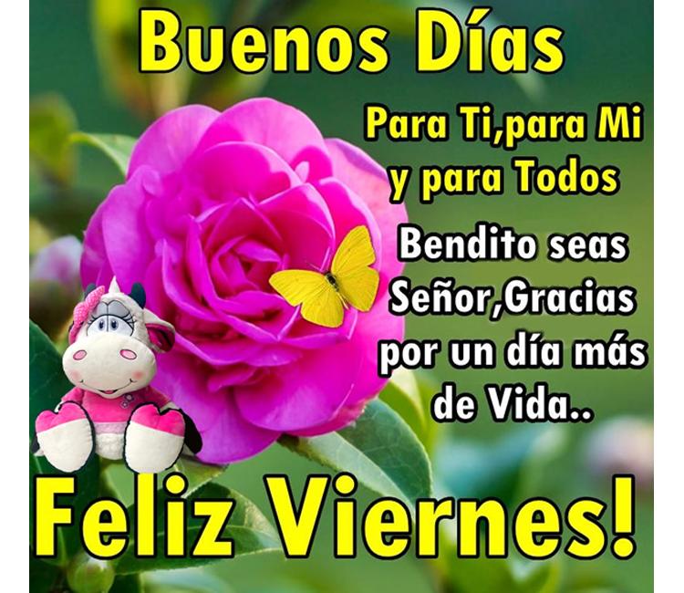 Buenos días, para ti, para mi y para todos. Bendito seas Señor, gracias por un día mas de vida. Feliz viernes