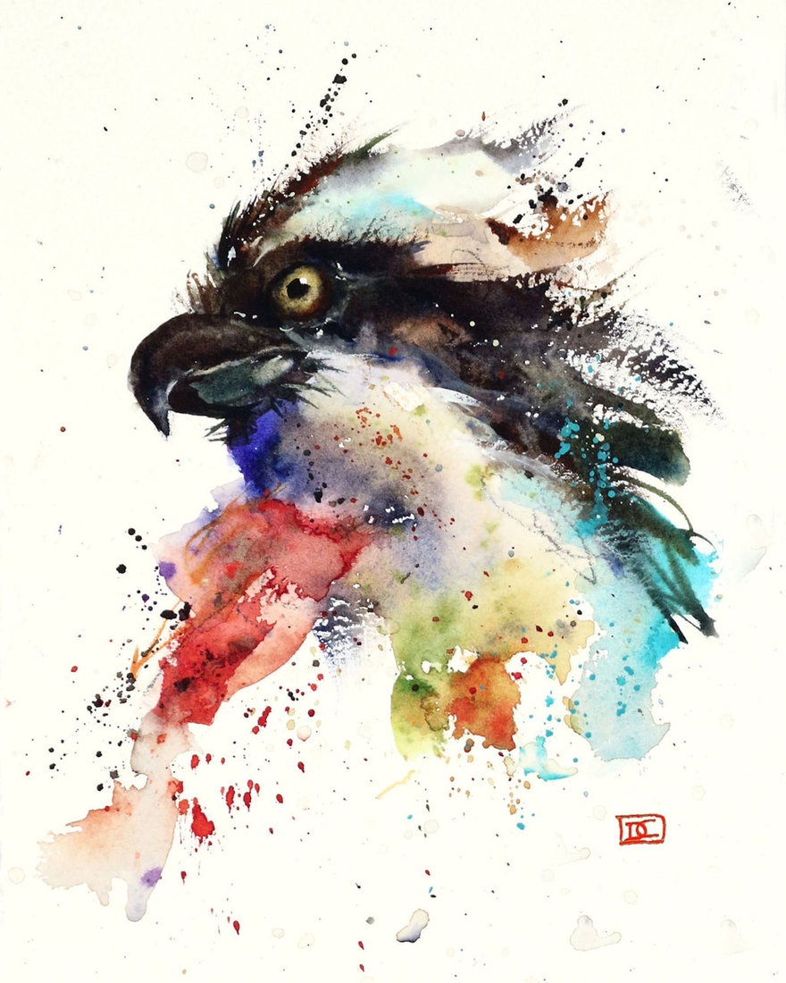 10-Osprey-Dean-Crouser-A-Love-of-the-Outdoors-Spawns-Animal-Watercolor-Paintings-www-designstack-co