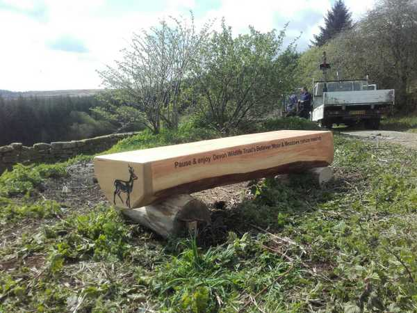 New bench at Laughter Hole, Bellever Moor and Meadows. Photo copyright Devon Wildlife Trust (All rights reserved)