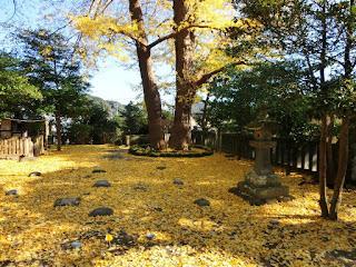 御霊神社の黄葉