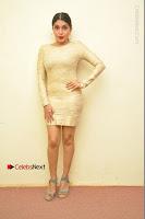Actress Pooja Roshan Stills in Golden Short Dress at Box Movie Audio Launch  0125.JPG