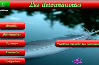 LOS DETERMINANTES. ACTIVIDADES ONLINE