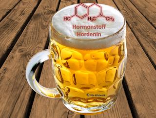 Bier macht glücklich - Wissenschaft