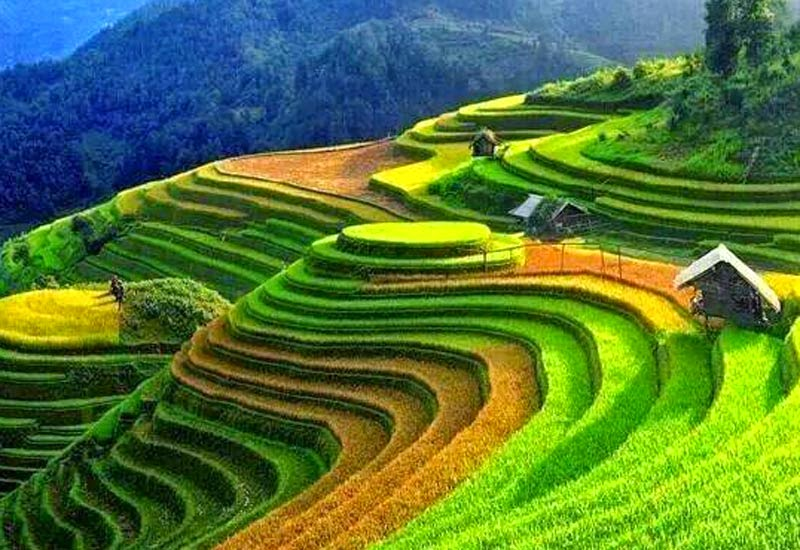 The best time to trekking in Sapa