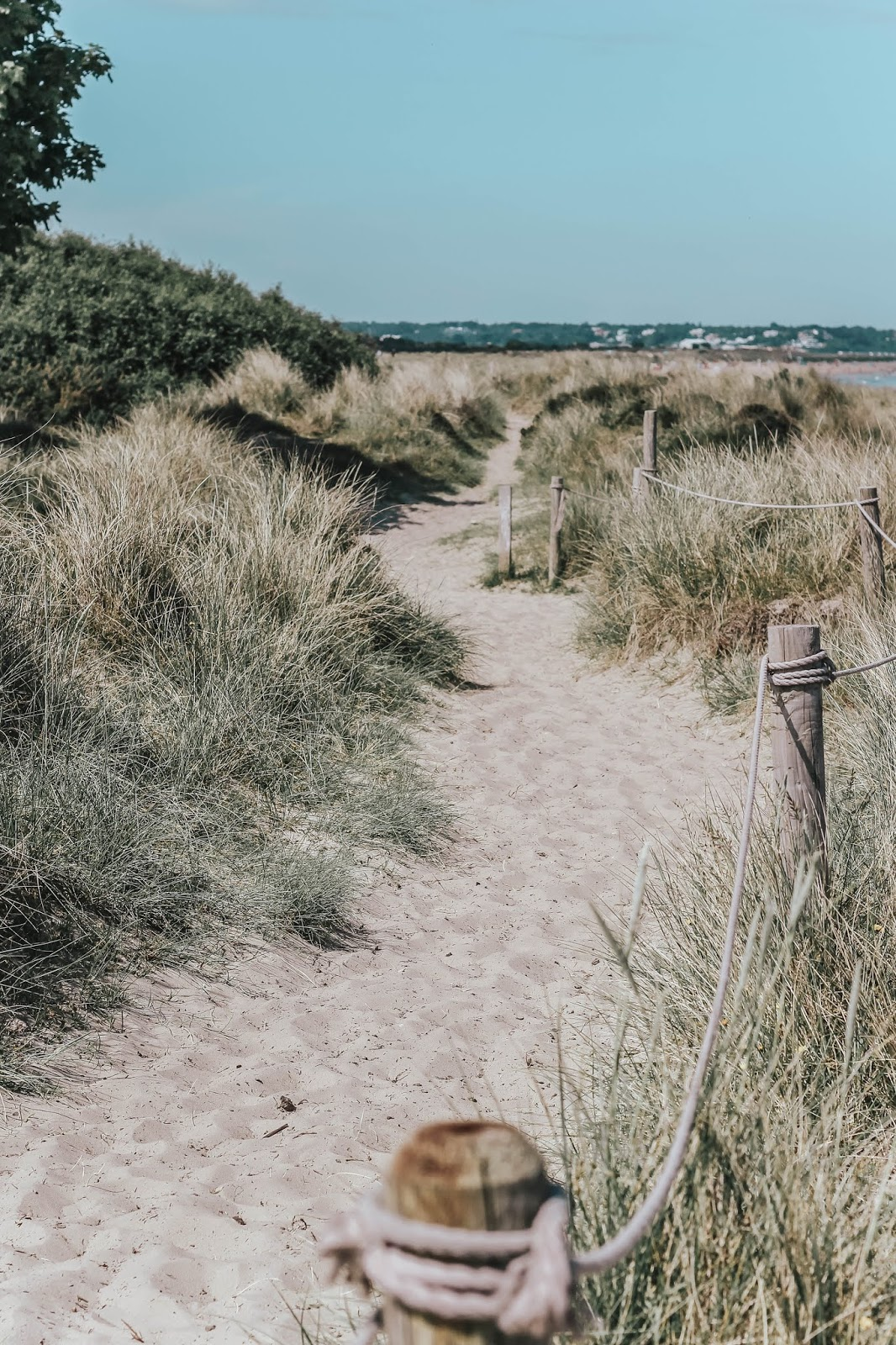 National Trust Studland Bay Beach Sand Dunes