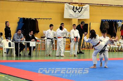 Nihon Tai Jitsu