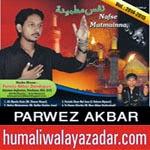 http://www.humaliwalayazadar.com/2014/10/parwez-akbar-nohay-2015.html