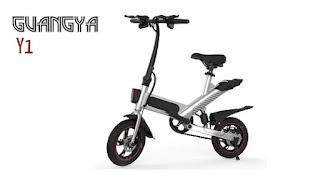 Opinión Bicicleta GUANGYA Y1