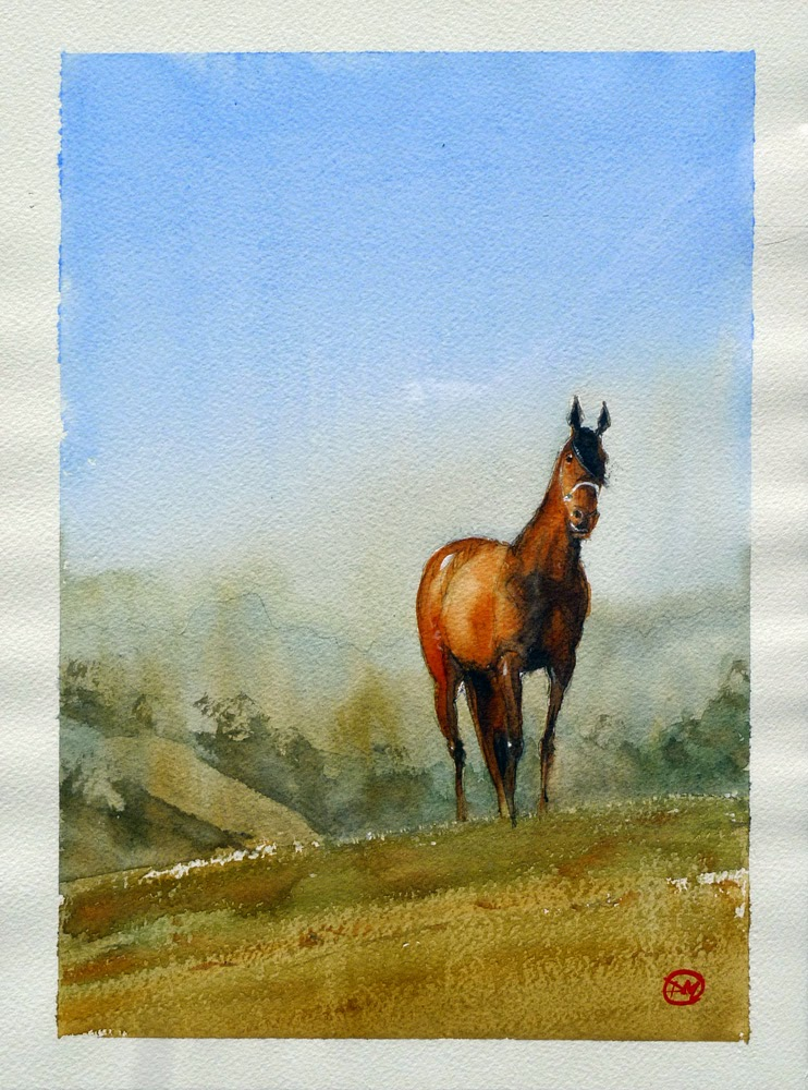 Horse watercolour by David Meldrum