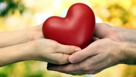 Pendidikan dan Esensi Kasih Sayang