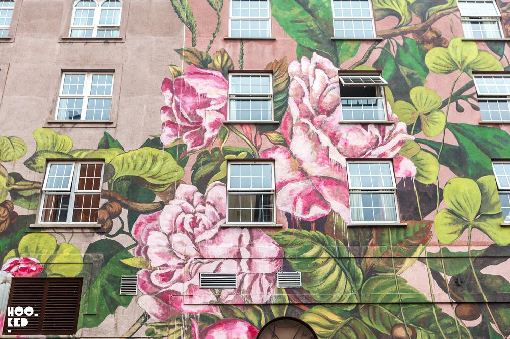 Shot of Spanish Street Artist Lula Goce Waterford Mural.