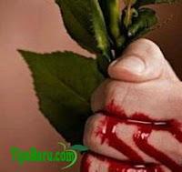 Cara Menghentikan Pendarahan