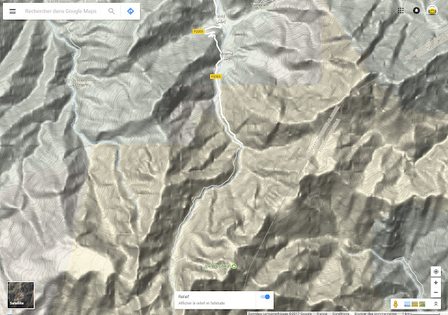 Google Map en mode Relief