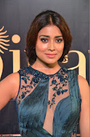 Shriya Saran in Beautiful Transparent Dark Gown IIFA Utsavam Awards 2017 070.JPG