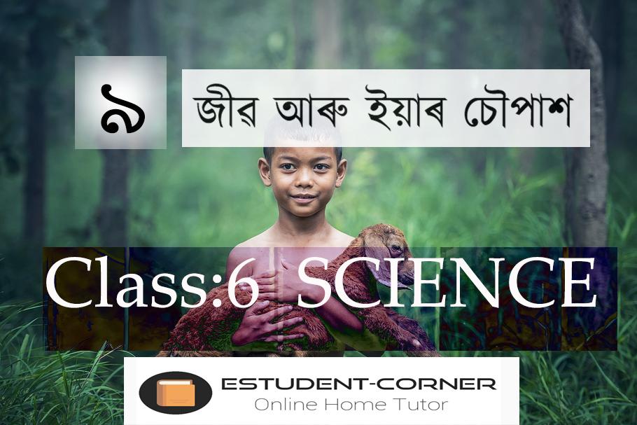 জীৱ আৰু ইয়াৰ চৌপাশ, Lesson 9, Class 6, Science, All Answers Solved in Assamese Medium, SCERT