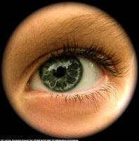 un ojo que todo lo ve