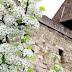 Tavaszi hosszú hétvége az Egri várban