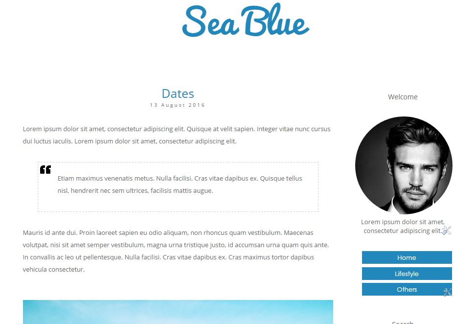 Free Blogger Template, Blue Color