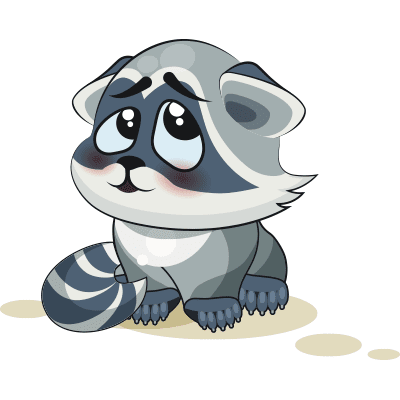 Bashful Raccoon