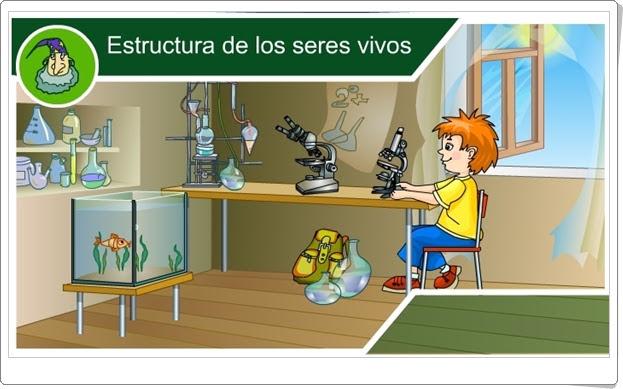 """""""Estructura de los seres vivos"""" (Juego de Ciencias Naturales de Primaria)"""