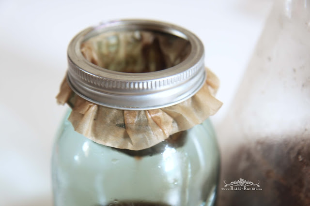 Cold Brewed Sweet Iced Coffee, Bliss-Ranch.com
