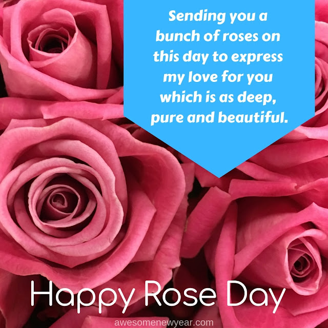 Happy Rose Day Wishes 2019