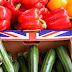 Πόσο θα επηρεαστεί ο κλάδος των τροφίμων μετά το Brexit