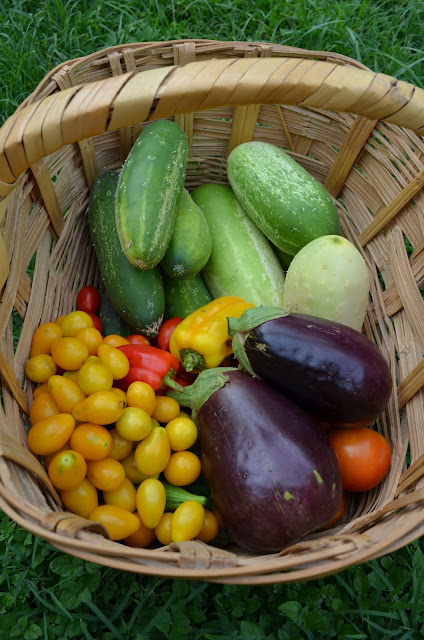 July 2015 Harvests