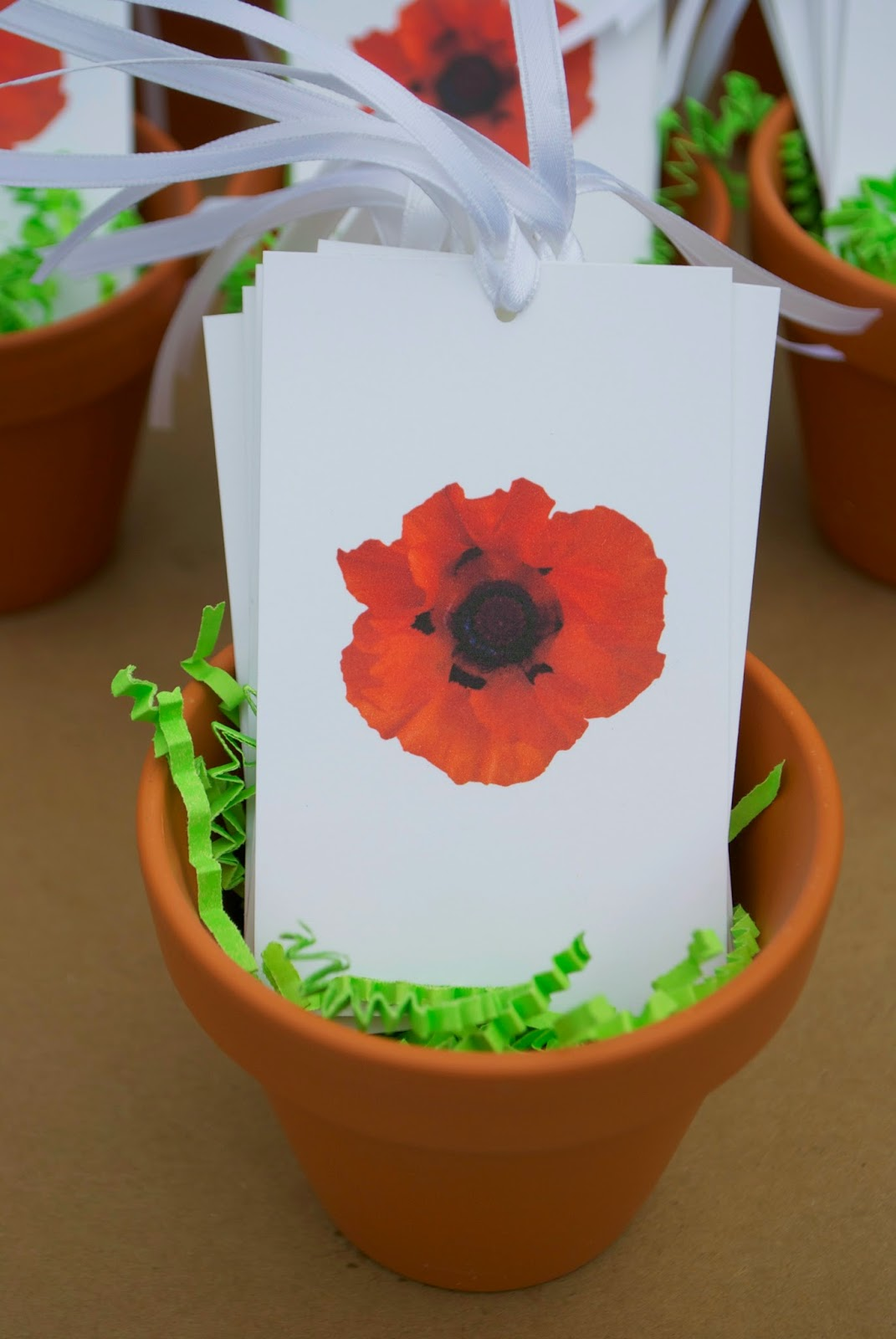Jac O' Lyn Murphy: Pretty Party Poppies