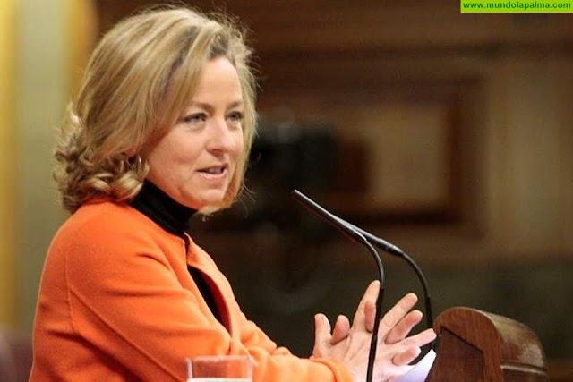 """CC vota a favor del techo de gasto """"para que pueda elaborarse un Presupuesto que haga justicia con Canarias"""""""