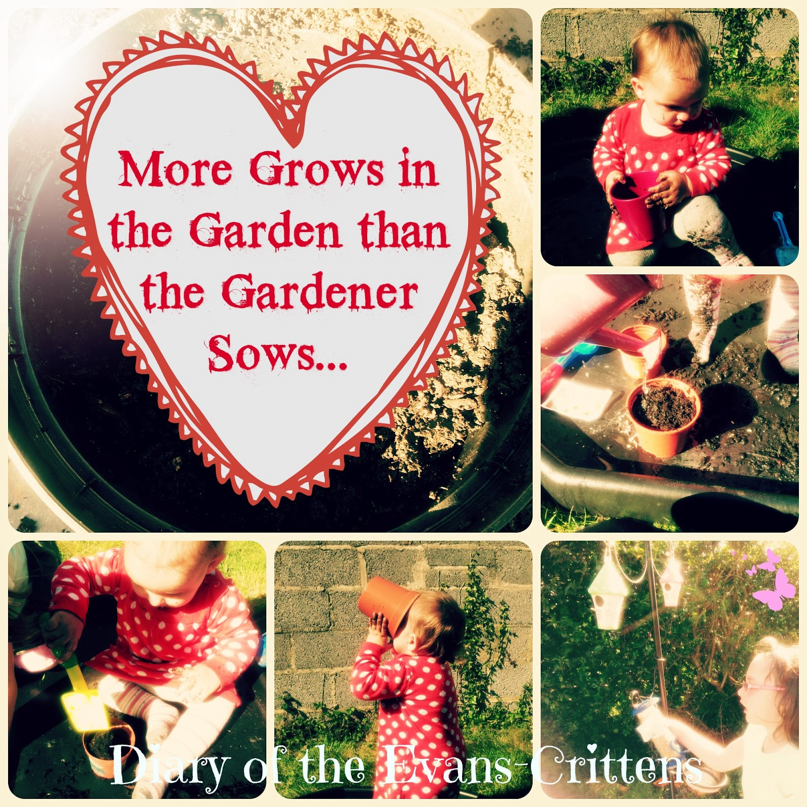 More Grows in the Garden than the Gardener Sows Messy play planting seeds
