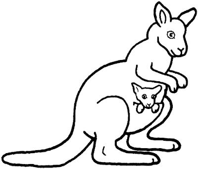 Gambar mewarnai kanguru - 8