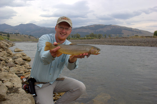 Another Lamar River Yellowstone cutthroat trout