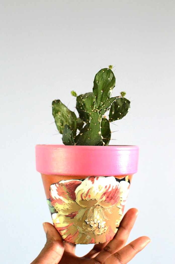 Painted/DiY Terra Cotta Pot with Cactus