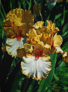 flores-naturalezas-vivas