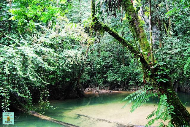 Clearwater Cave en Parque Nacional del Gunung Mulu (Borneo, Malaysia)