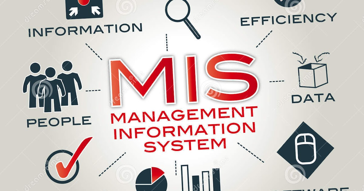 206 Management Information Systems Mba Mcqs Sppu Mba