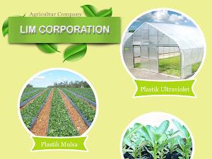 Bioetanol Sebagai Alternatif Membuat Energi Yang Terbarukan