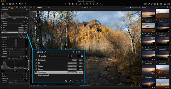 Phase One Capture One Pro 11.3.0.20 Terbaru
