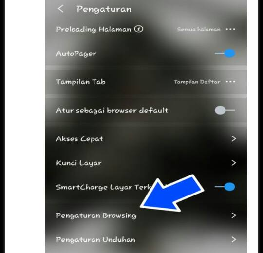pengaturan Browser